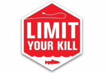 LimitYourKill