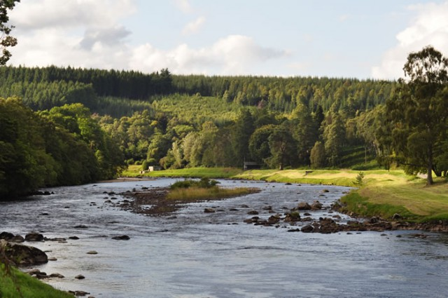 Grey Mare, Cairnton Beat, River Dee