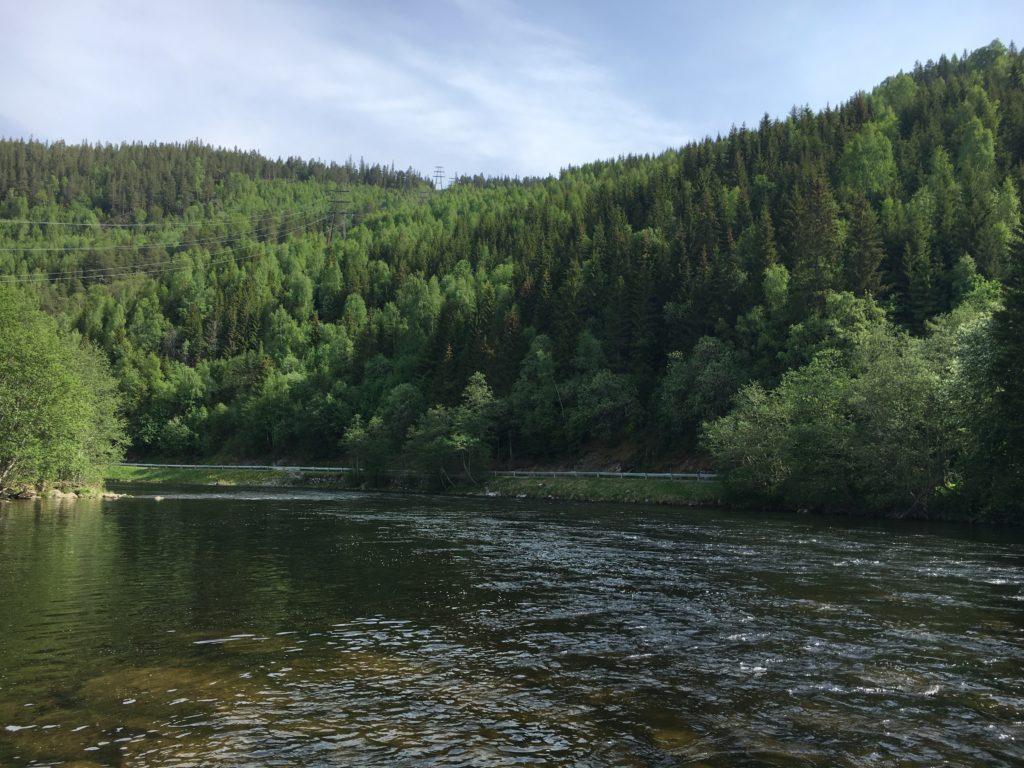 Översta delen av sträckan har lite djupare och intressanta platser. Här står det fisk hela säsongen...